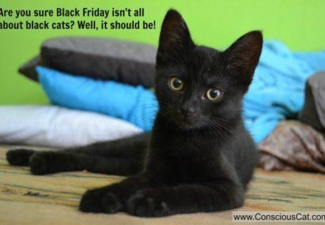Black-Friday-e1479467185539