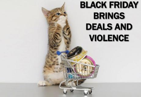 Current-Event-Cat-Black-Friday