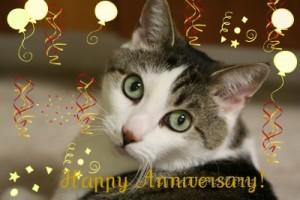 Happy-Anniversary-TTT