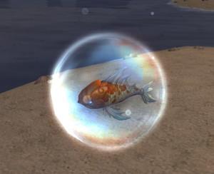Image 3 - tiny-goldfish