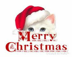 happy day after christmas a3ers also happy boxing day hope you all had a wonderful holiday today will be short and sweet with just a few reminders about - Merry Christmas Cat